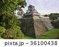 今こそ見に行く価値がある熊本城 (宇土櫓) 36100438
