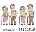 杖 歩く シニアのイラスト 36101516