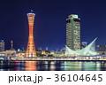 神戸 夜景 メリケンパークの写真 36104645