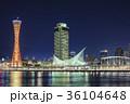 神戸 夜景 メリケンパークの写真 36104648