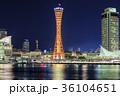 神戸 夜景 メリケンパークの写真 36104651