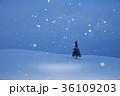 北海道 雪 積雪の写真 36109203