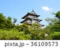 弘前城 弘前公園 青空の写真 36109573