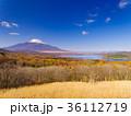 富士山 36112719