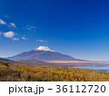 富士山 36112720