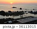 朝日 海 海岸の写真 36113015