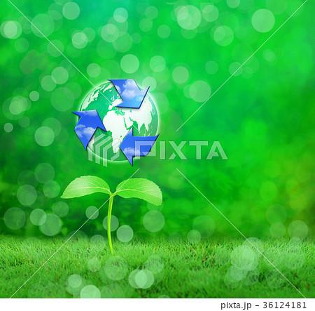 若葉から芽生えるリサイクル 36124181