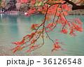 京都 嵐山 桂川の写真 36126548