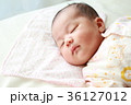 0b10023a104a4 新生児* 生後4日目の写真素材  35330254  - PIXTA