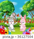 動物 うさぎ バニーのイラスト 36127504