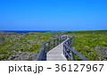 青空 海 道の写真 36127967