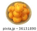 温州みかん 蜜柑 果物のイラスト 36131890