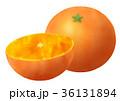温州みかん 蜜柑 カットみかんのイラスト 36131894
