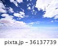 ウユニ塩湖 36137739