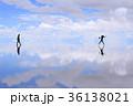 ウユニ塩湖 36138021