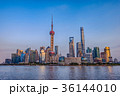 中国 上海 上海タワーの写真 36144010