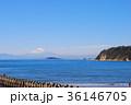 富士山 海岸 海の写真 36146705