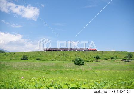 小海線 築堤を行く高原列車 36148436