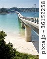 橋 角島大橋 海の写真 36152258