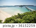 橋 角島大橋 海の写真 36152259