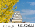 姫路城 秋 黄葉の写真 36152688