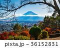 富士山 富士見孝徳公園 紅葉の写真 36152831