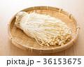 エノキ 36153675