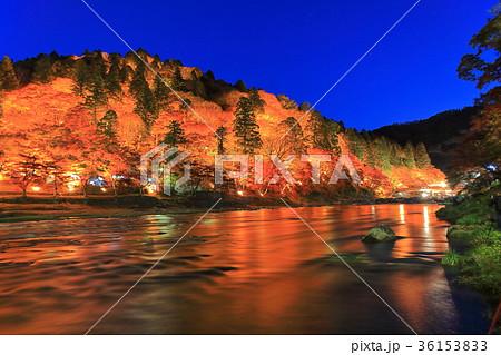 香嵐渓紅葉のライトアップ 36153833