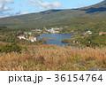 白樺湖 秋 茅野市の写真 36154764