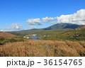 白樺湖 秋 茅野市の写真 36154765