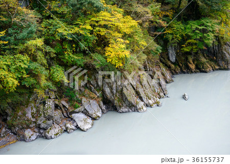 渓谷の川 36155737