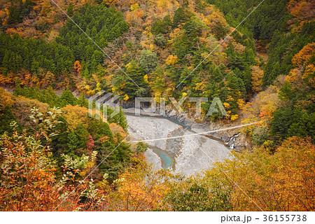 渓谷の風景、寸又峡。 36155738