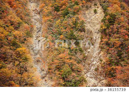 渓谷の風景、晩秋の山。 36155739