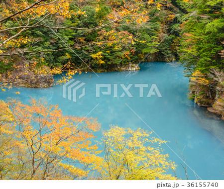 渓谷の風景。晩秋のダム湖。 36155740