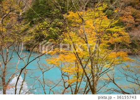 渓谷の風景。晩秋のダム湖。 36155743
