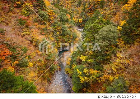 渓谷の風景、晩秋の山と谷川。 36155757