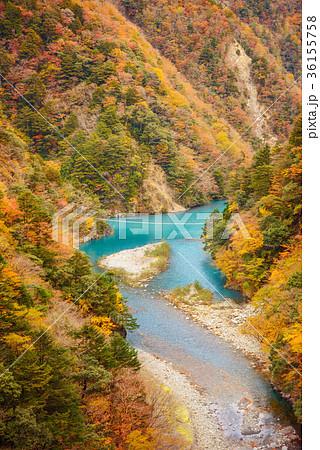 渓谷の風景、ダム湖にかかる橋、寸又峡。 36155758