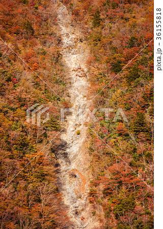 渓谷の風景、晩秋の山。 36155818