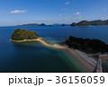 周防大島 島 海の写真 36156059