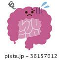 腸 不健康 キャラクターのイラスト 36157612