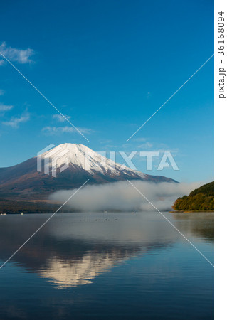 富士山 逆さ富士 青空 山中湖 36168094