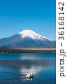 富士山 逆さ富士 青空の写真 36168142
