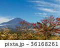 富士山 紅葉 風景の写真 36168261