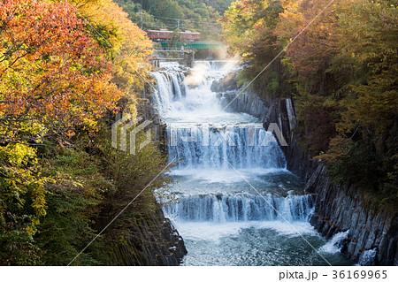 田原の滝 紅葉 [山梨県] 36169965