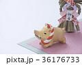 亥 猪 正月飾りの写真 36176733