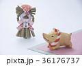 亥 猪 正月飾りの写真 36176737
