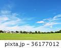 青空 雲 公園の写真 36177012