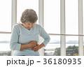 シニア 腹痛  36180935