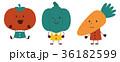 野菜 36182599