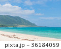 海岸 砂浜 ビーチの写真 36184059